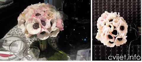 anemona-cvijet7.jpg