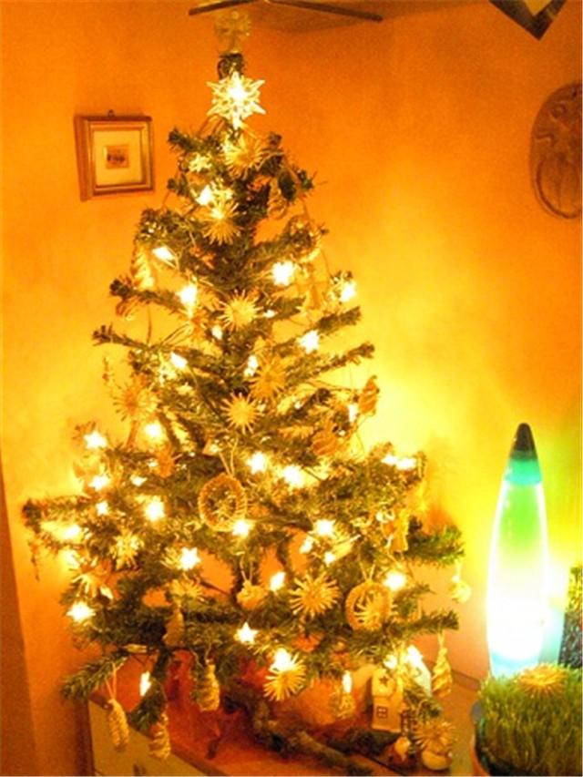 Božićno drvce - Slike od članova - Slika 19633